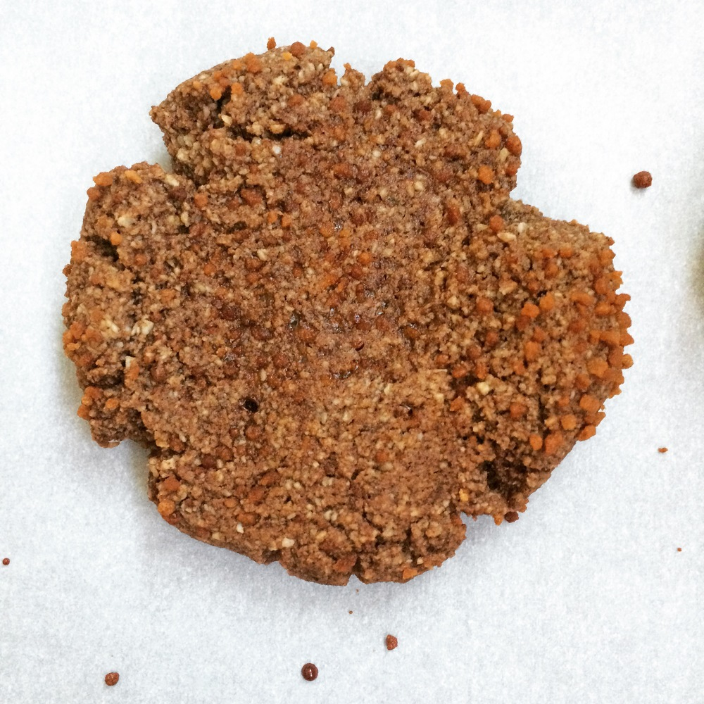 Cocoa Ginger Cookies