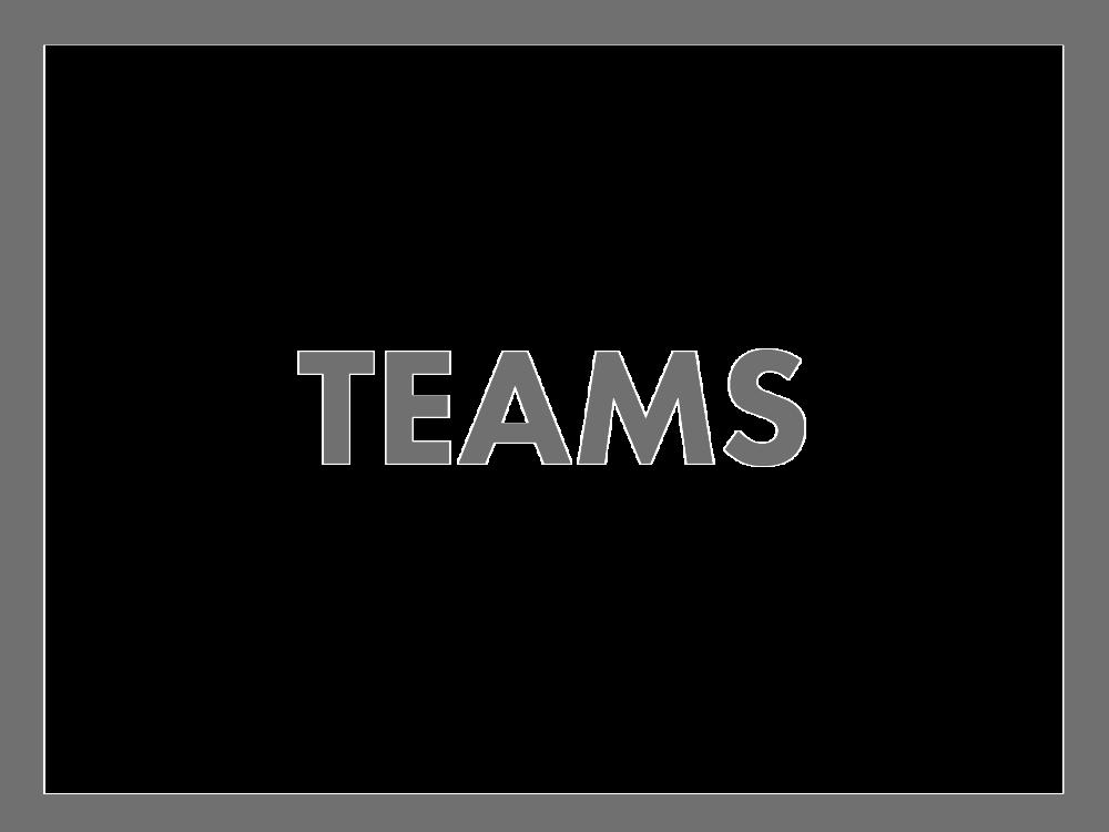 ALIVE teams.png