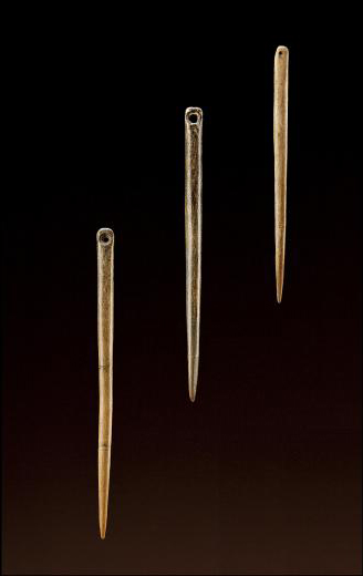 Chinese bone needles