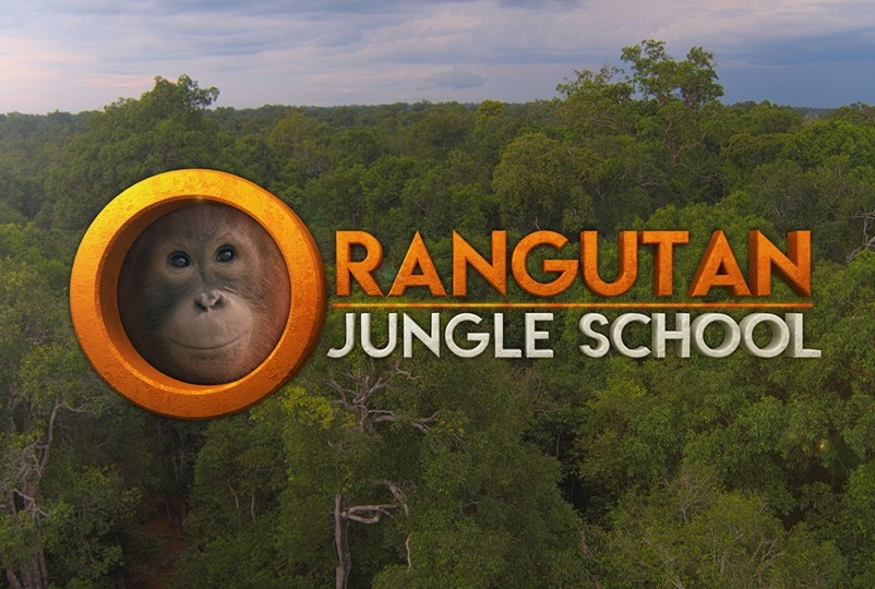 SCOTT MASON FOR    ORANGUTAN JUNGLE SCHOOL