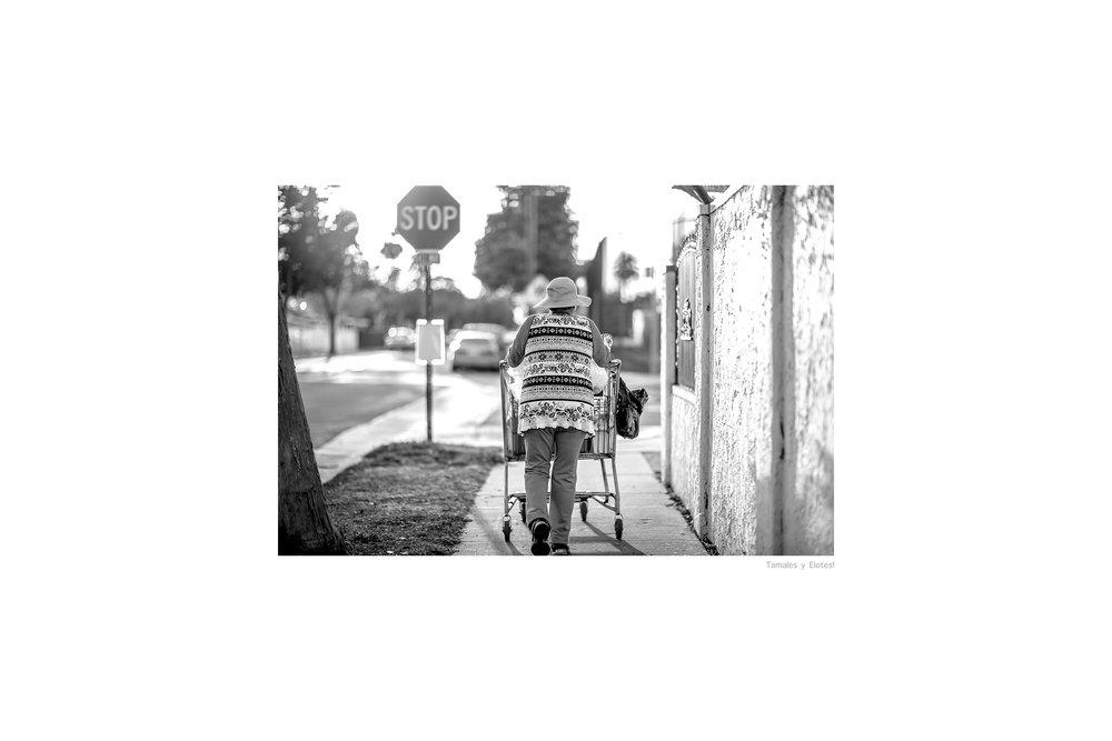 Street_Cart-SA-CTS-1.jpg