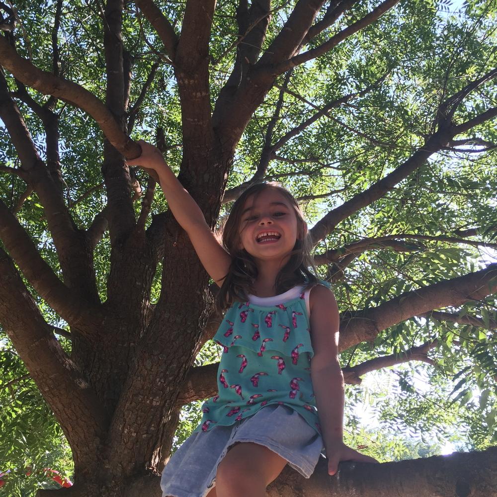 Beautiful tree-climber.