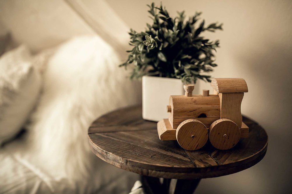 shelby-schiller-photography-lifestyle-studio-plant-and-wooden-train-toy.jpg