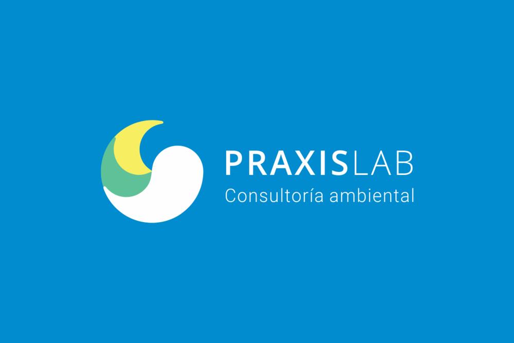 Praxislab_Isologotipo3_Membrete-Estudio.png