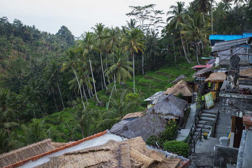 hapa holiday-ubud-17.jpg