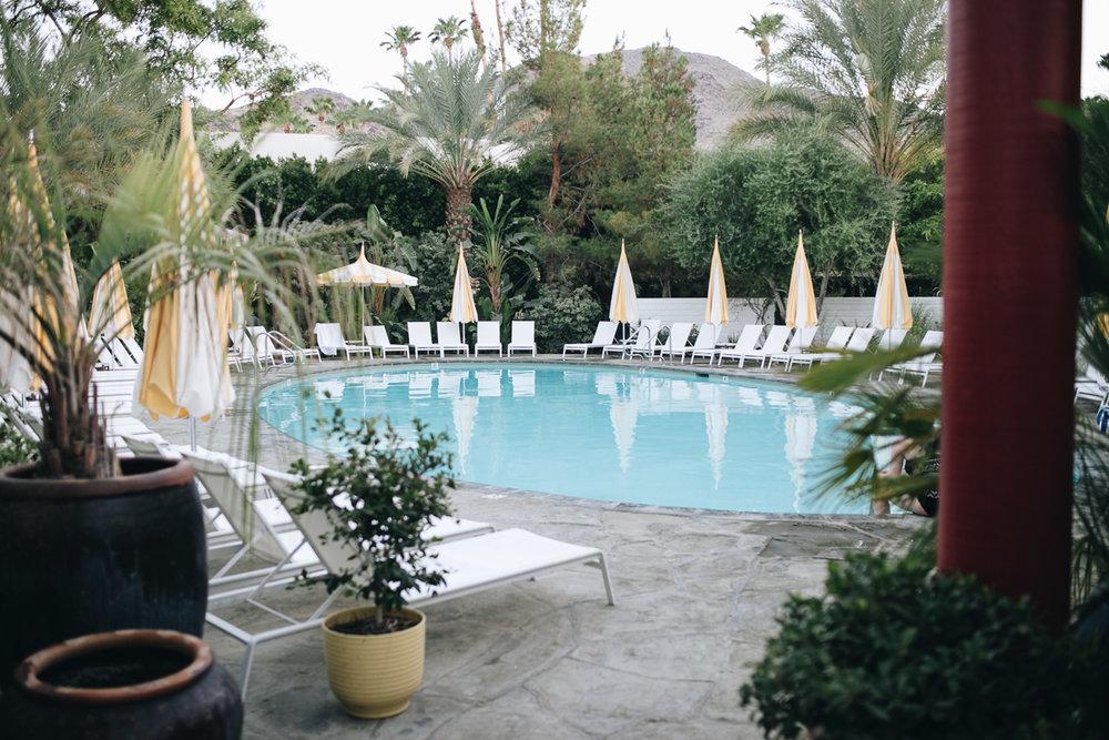 Hapa Holiday - Parker Palm Springs-8.jpg