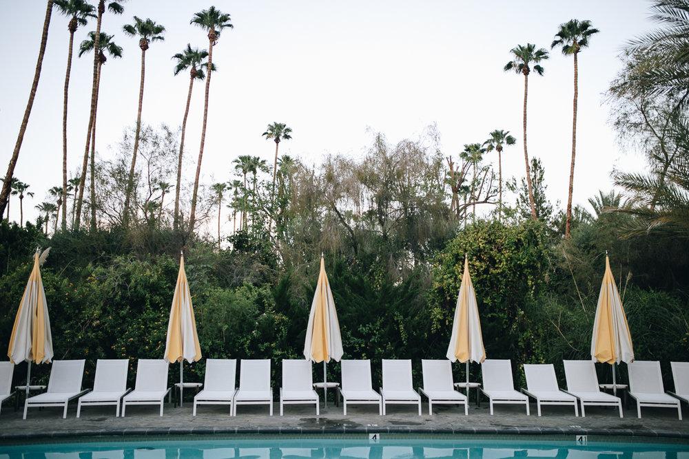 Hapa Holiday - Parker Palm Springs-15.jpg