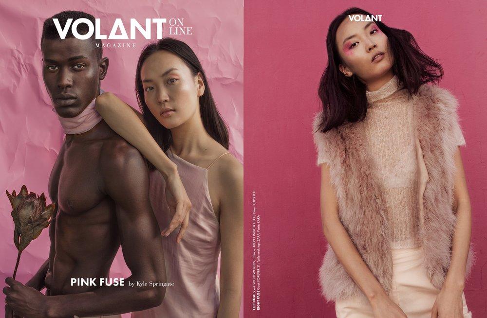 VOLANT-webitorial-pinkfuse.jpg