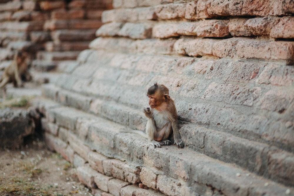 reportage-voyage-thailande-gwendolinenoir-resonance34.jpg