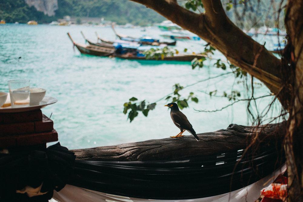 reportage-voyage-thailande-gwendolinenoir-resonance70.jpg