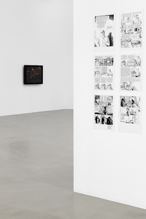 The pursuit of public happiness?,  2014 installation view