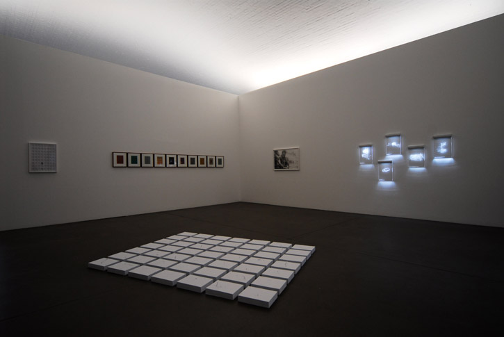 Freehand , 2009 installation view