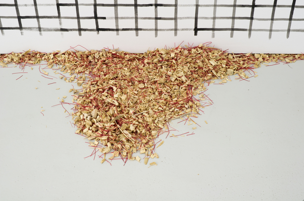 Schirin Kretschmann,  Feger , 2012 shredded brushes, variable dimensions