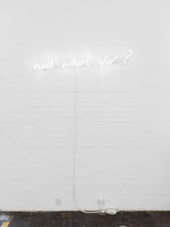 Why art now and what for? , 2014 neon, 2 pieces, 110 x 30 cm, 130 x 30cm
