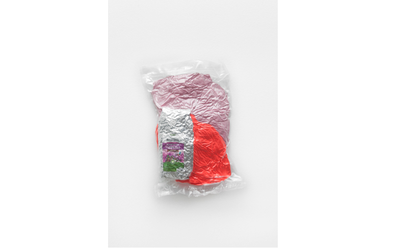 Ed Fornieles,  Adventures in Babysitting,   2016, vacuum packed, 40x28x7cm