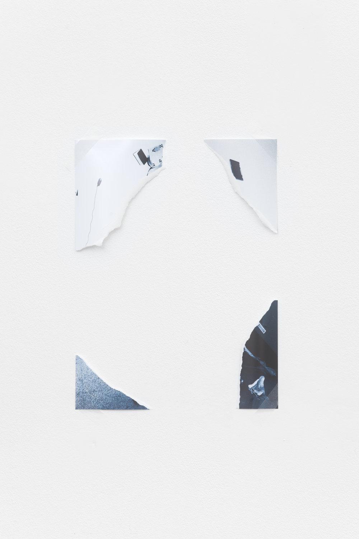 Catalogue Raisonné, 2016
