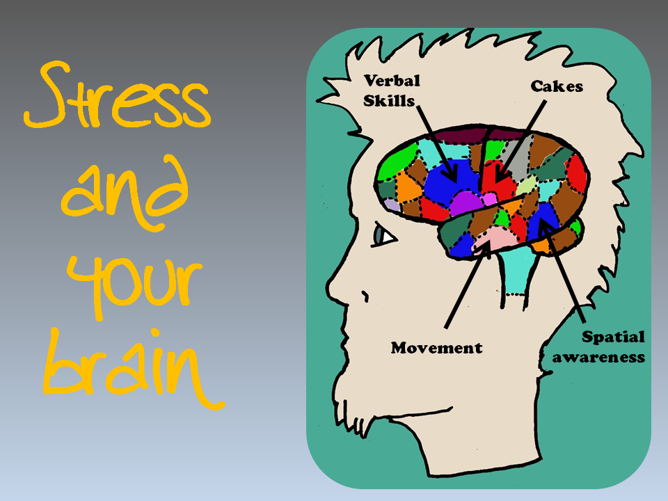 Success and Your Brain