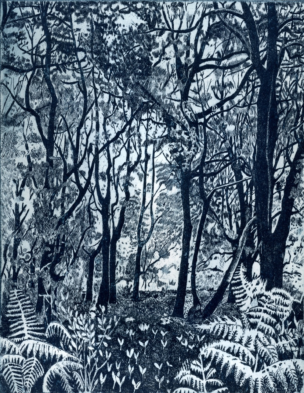Bracken Edge   etching