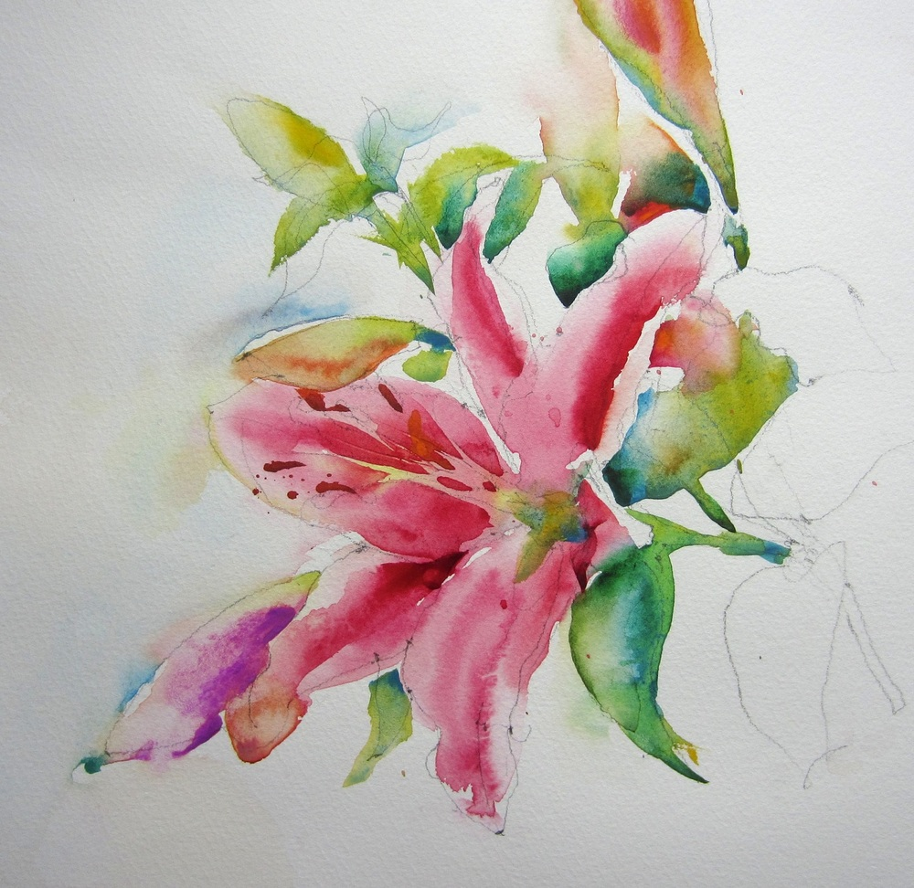 Lily III watercolour 40 x 40 cm £295