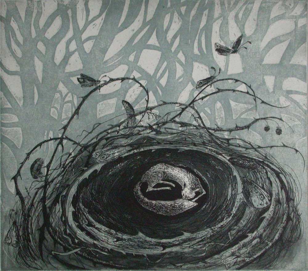 Fox-Nest   etching   24 x 27 cm  £220