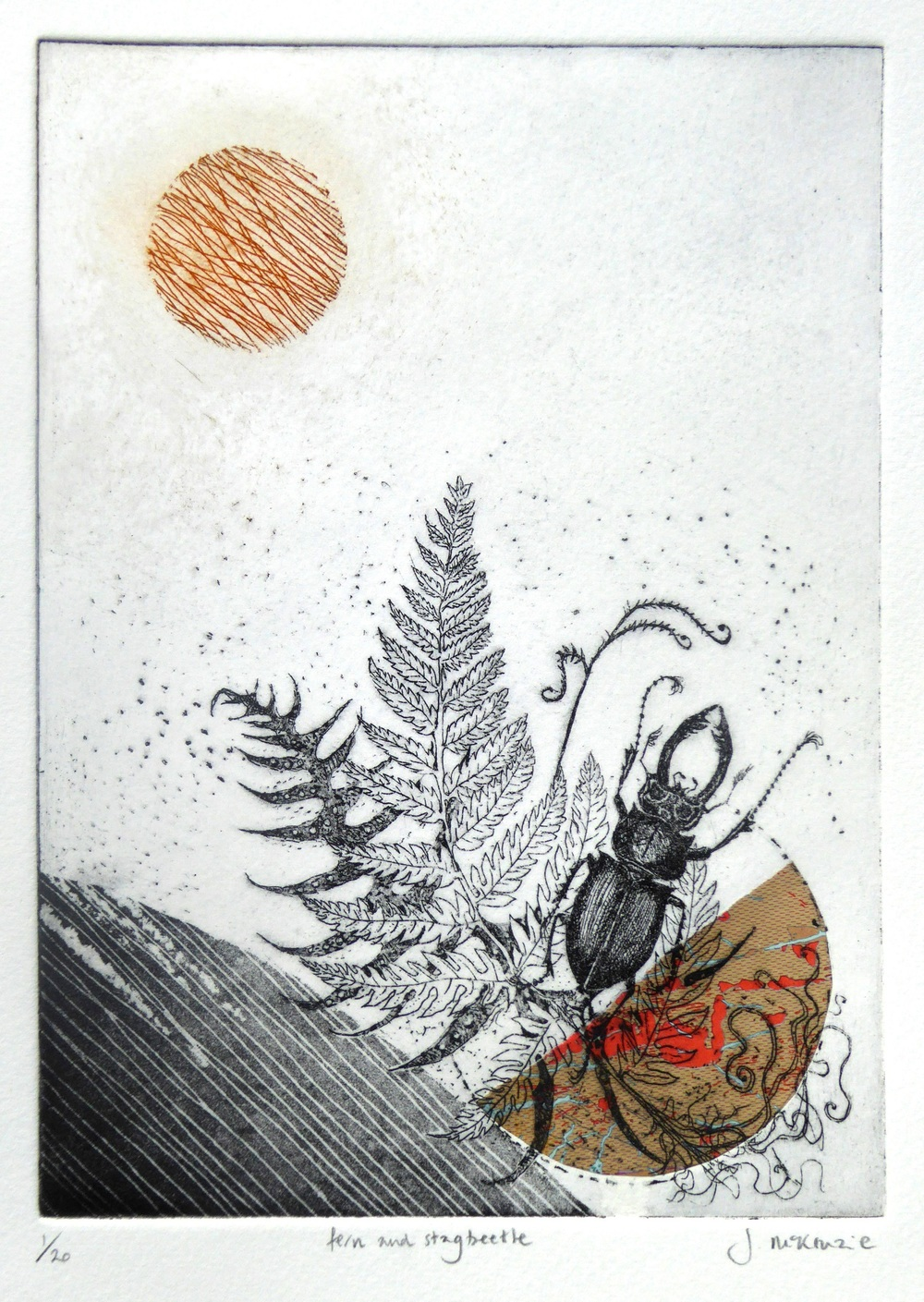Fern and Stag Beetle etching with chine colle