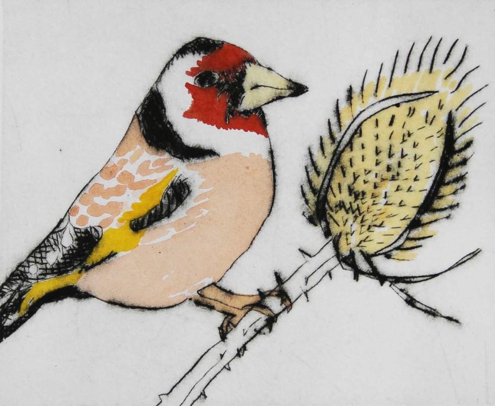 Goldfinch drypoint and watercolour 12 x 15 cm £270 framed £199 unframed