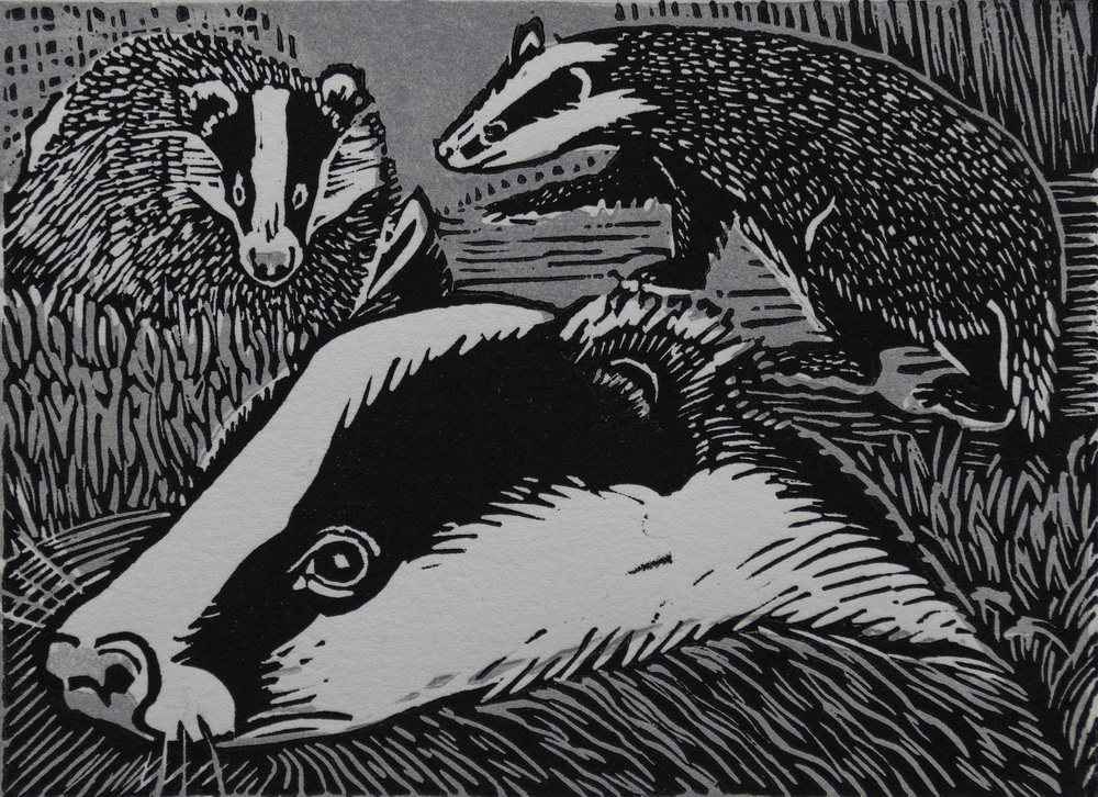 Badgers linocut £65 (unframed)