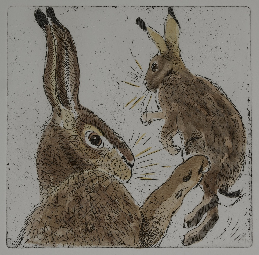 Two Hares   hand coloured   etching   £75 (unframed)