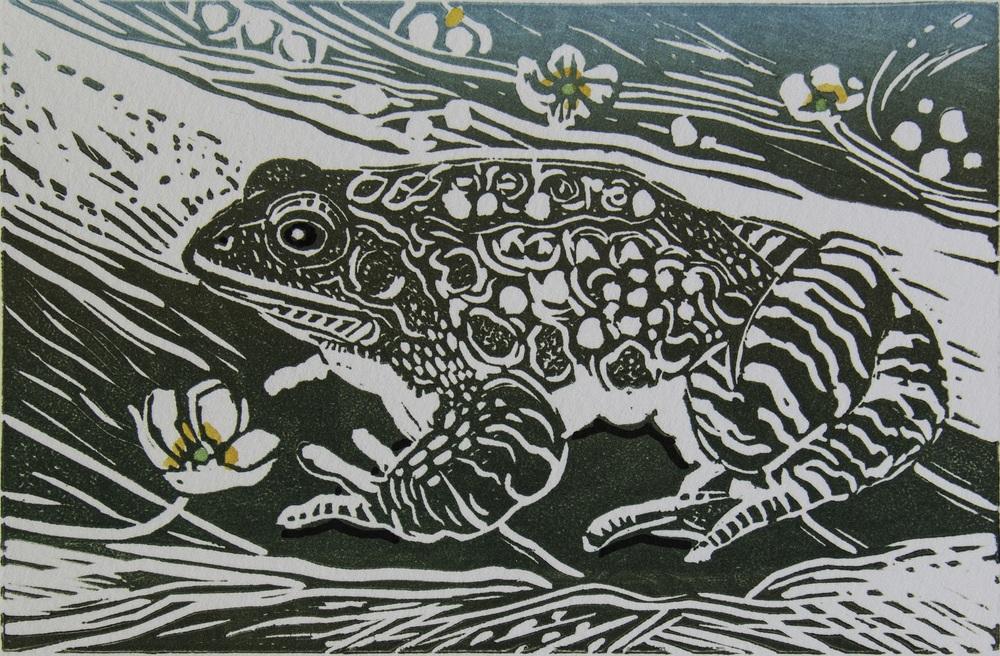 Frog linocut