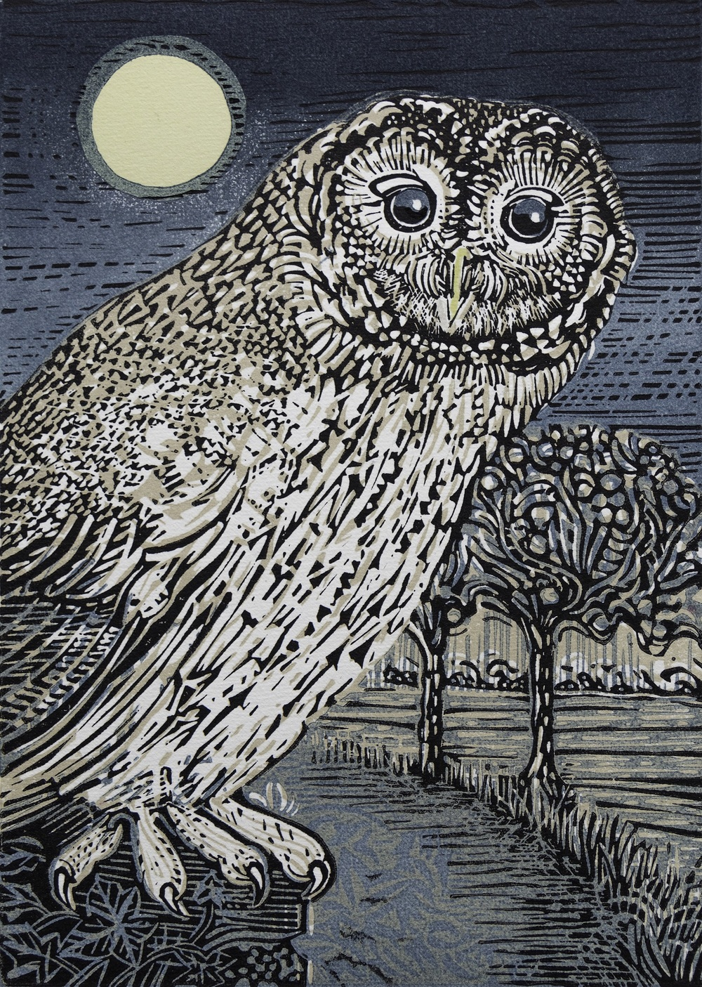 Tawny Owl linocut £120 (unframed)
