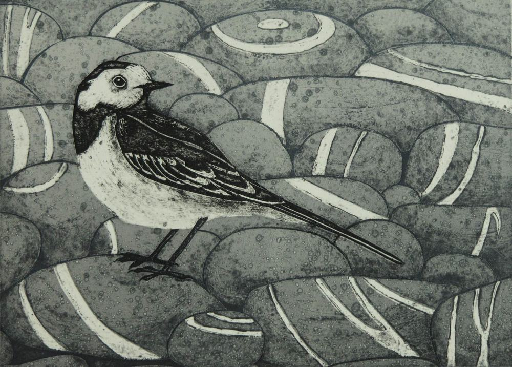 Pied Beauty   collagraph