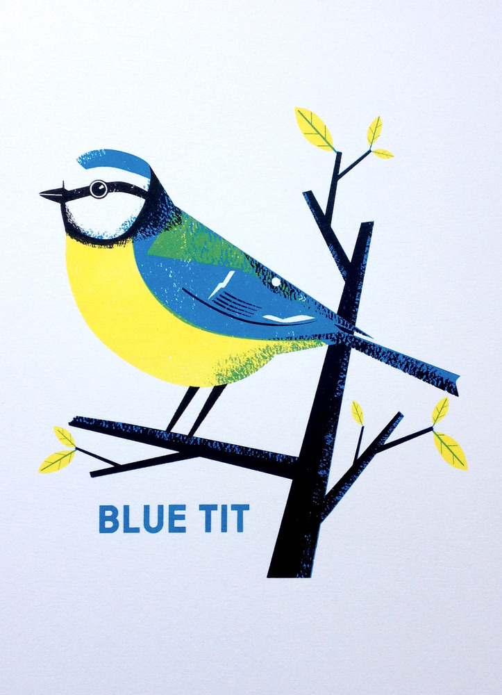 Blue Tit screenprint