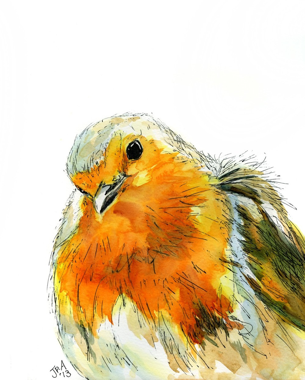 Ruby Red breast watercolour & ink £275