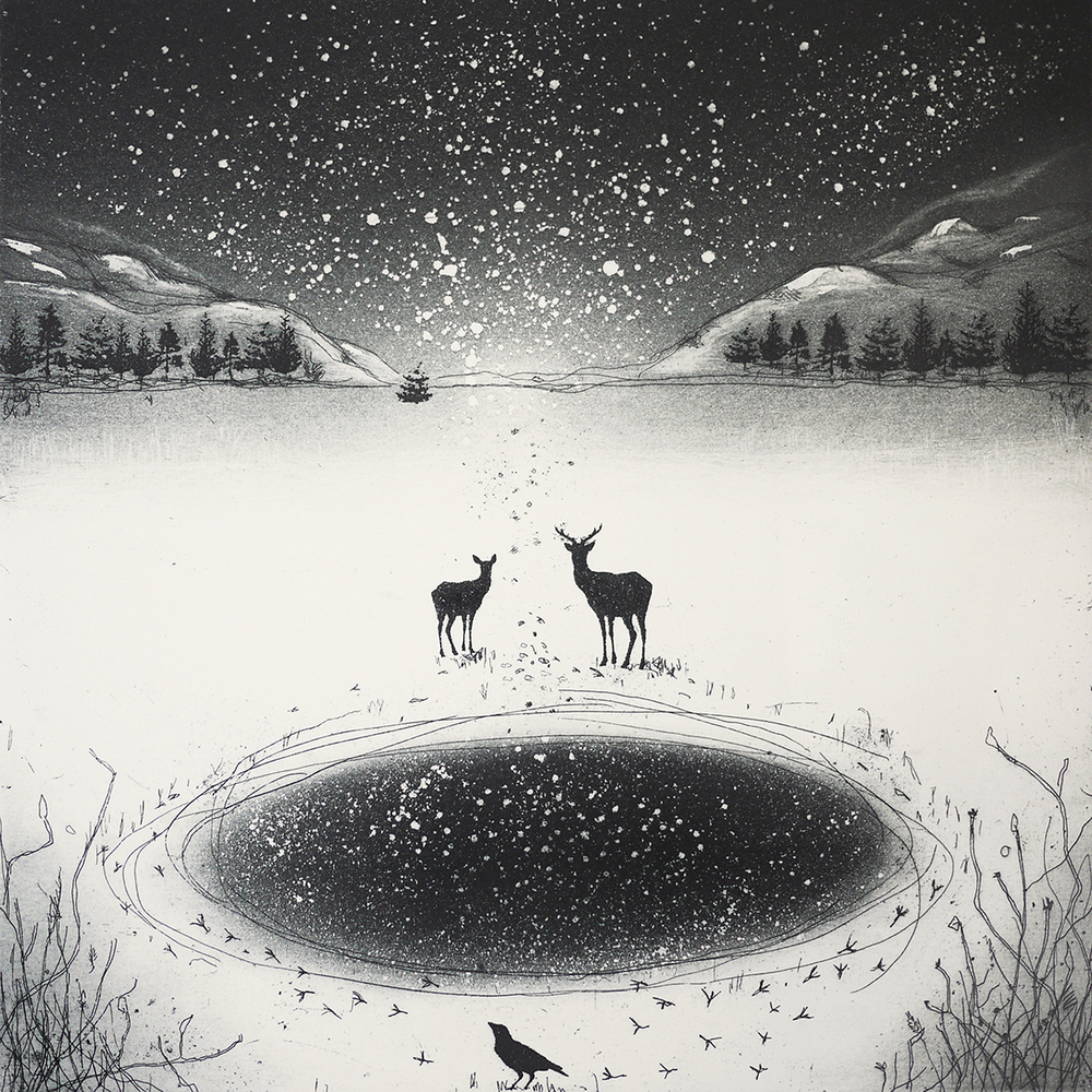 Waiting for Stars to Fall   etching   39 x 39cm  £200  (unframed)
