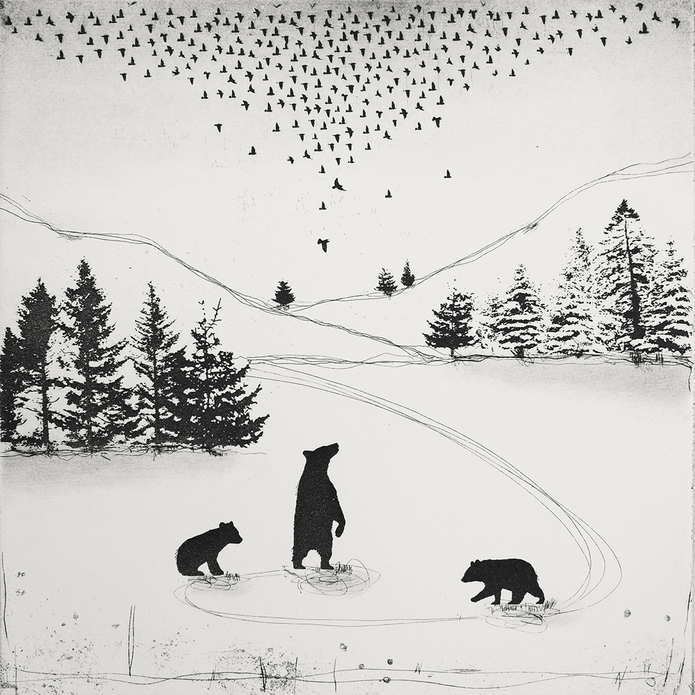 Bear Witness   etching   38 x 38cm  £200  (unframed)