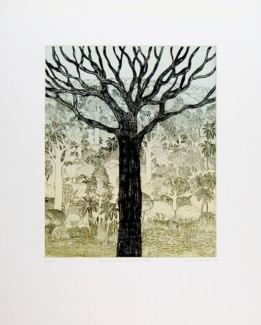 Bush with Black Kauri etching image 37x30cm, framed 64x54cm