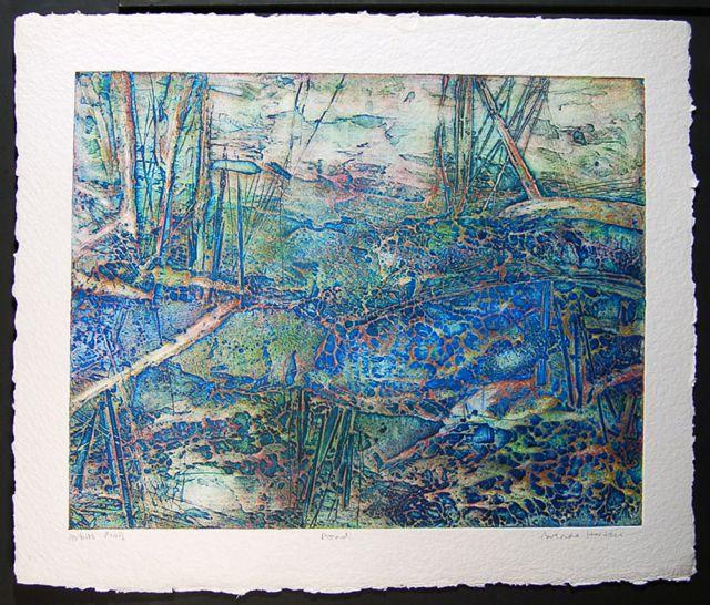 Pond collagraph paper 80x96cm, image 58x76cm rare