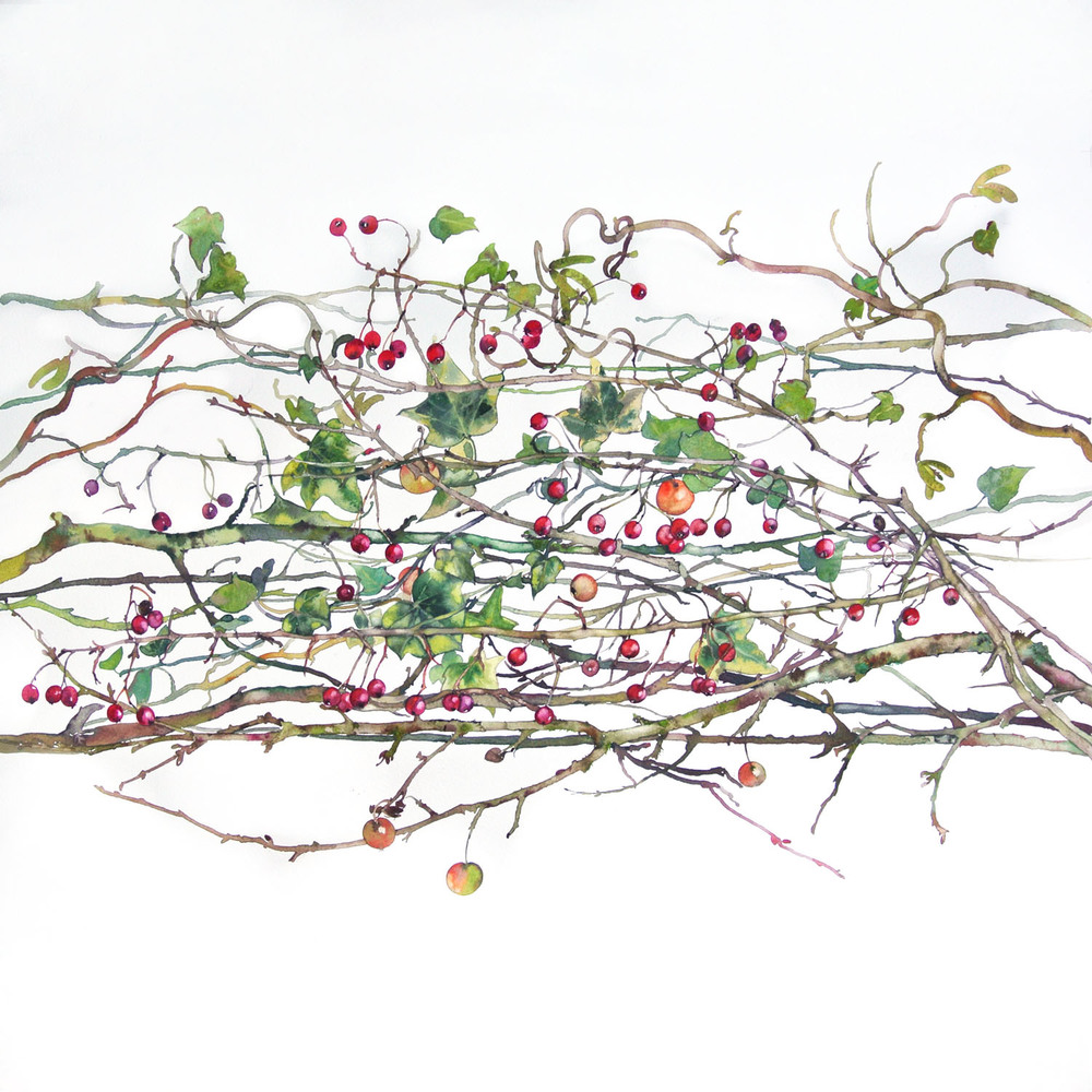 Winter Hedgerow watercolour 60 x 43 cm sold