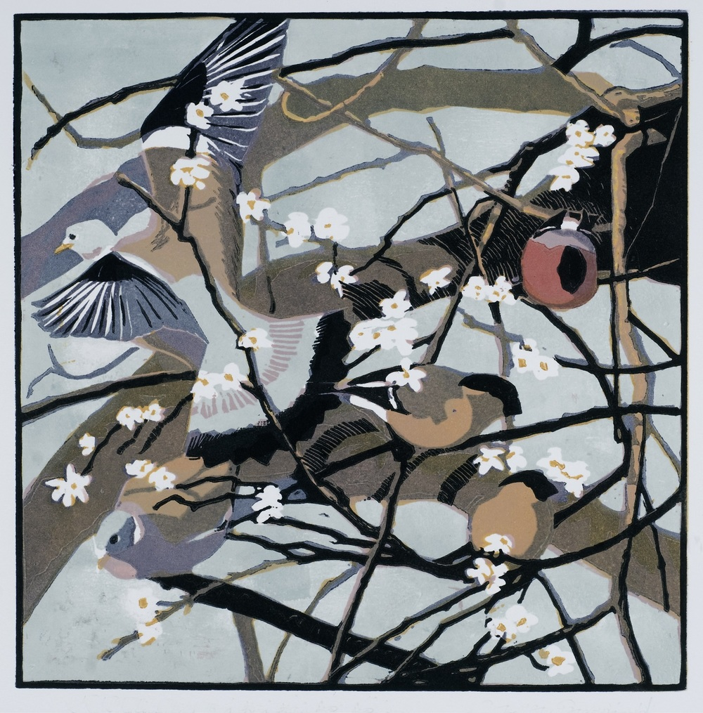 Robert Greenhalf   Bullfinches and Woodpigeons  woodcut