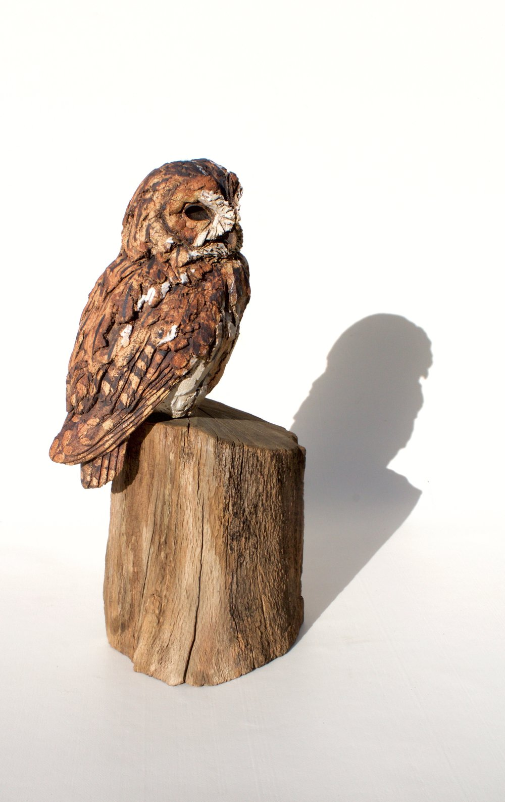Perched Tawny Owl  ceramic on wood  £550  SOLD
