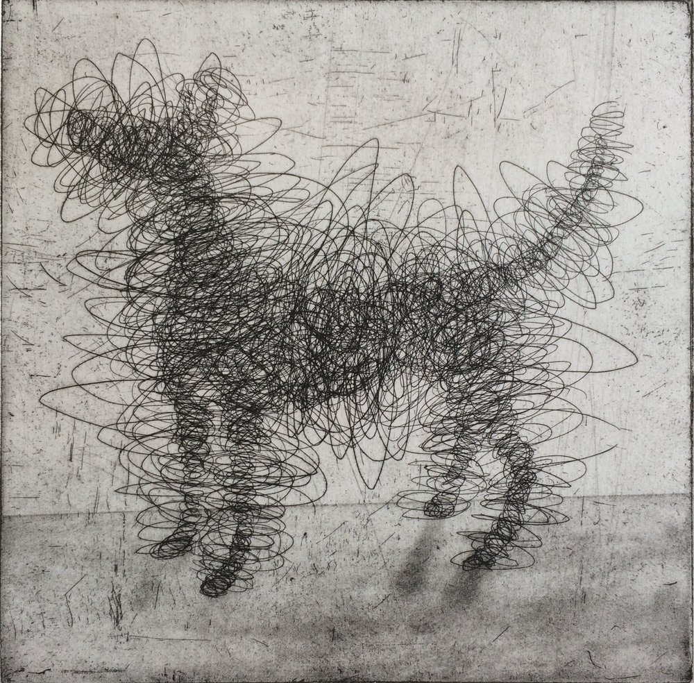 Gormley's Dog etching 22 x 22 cm £195 (unframed) £250 (framed)