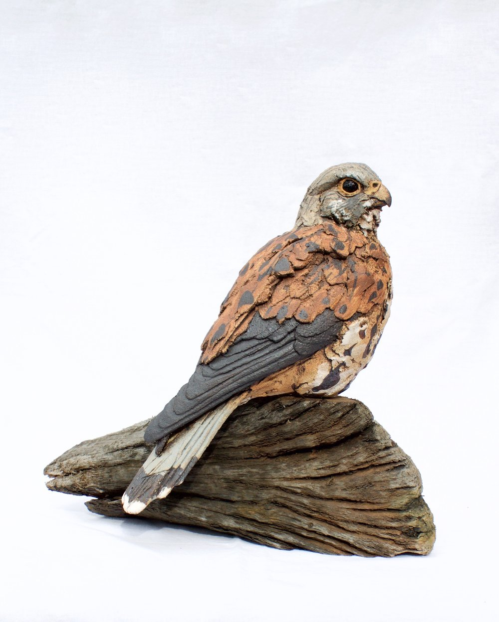 Free Standing Kestrel  ceramic on wood  £550        SOLD