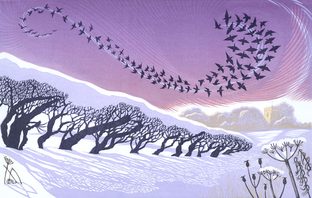 Niki Bowers December Starlings £150