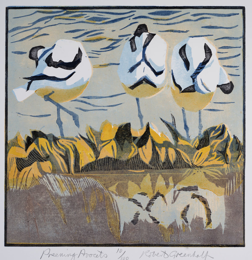 Preening Avocets   woodcut   28cmx 28cm  Framed  £185   Unframed £115