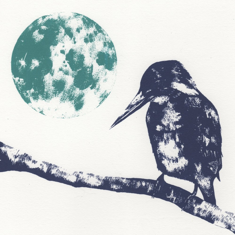 Kingfisher and Moon   screenprint    21 x 21 cm    £31 (unframed)