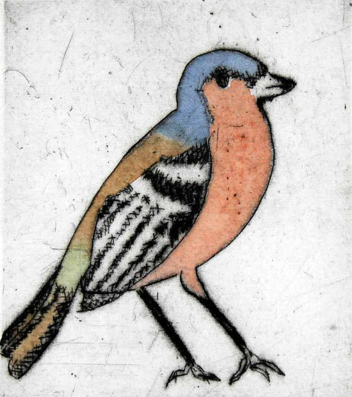 Chaffinch drypoint and watercolour 14 x 12.5 cm £210 framed