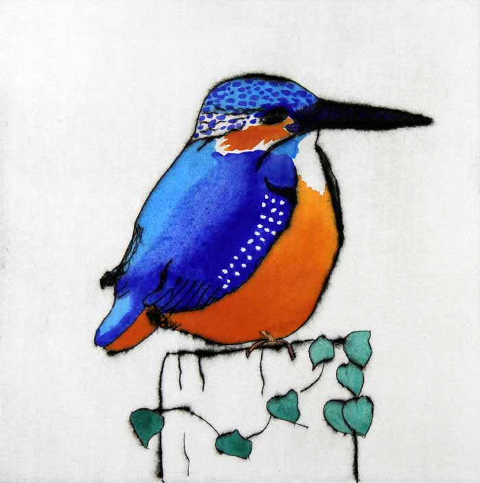 Perching kingfisher  drypoint and watercolour 20 x 20 cm £305 framed  £230 unframed