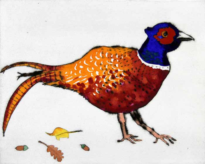 Strolling Pheasant  drypoint and watercolour 20 x 25 cm £350 framed  £275 unframed