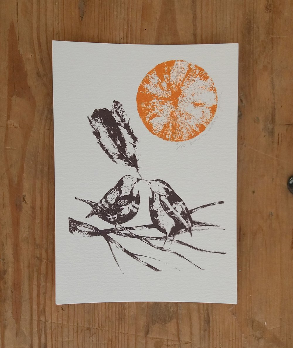 Brown Wrens    screenprint    £20 (unframed)