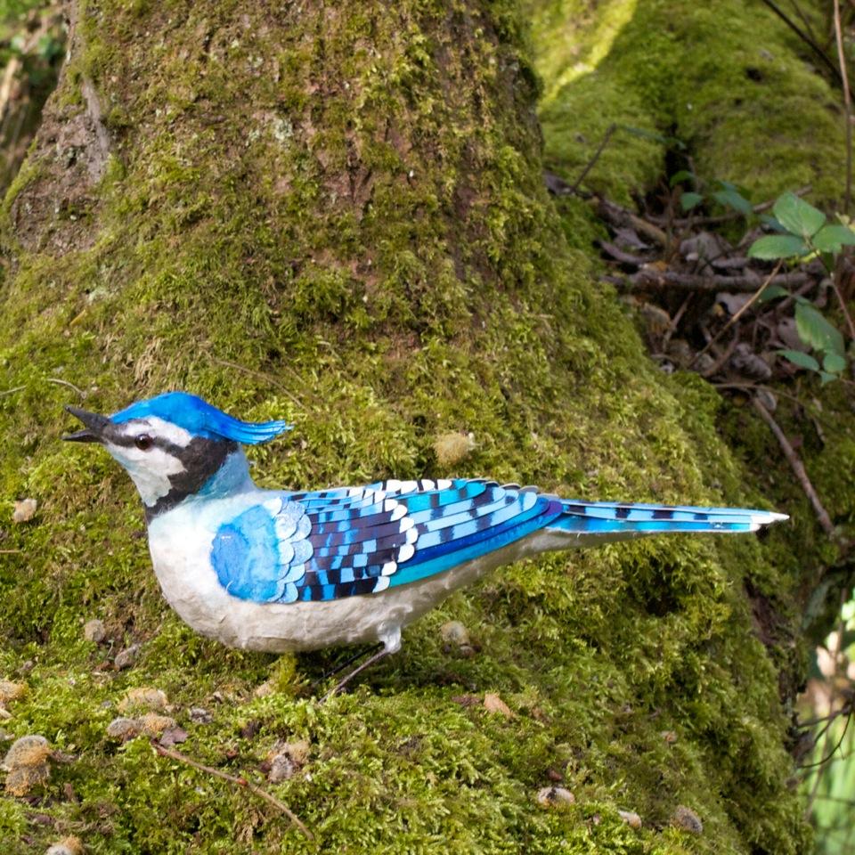 Blue Jay  mixed media  30 cms x 20 cm   £250
